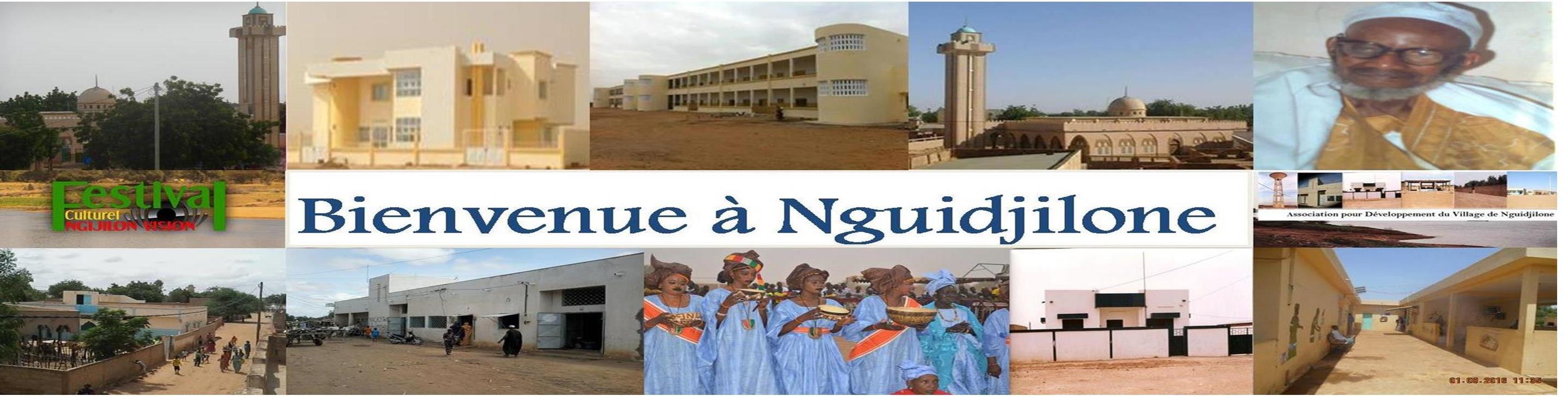 Association pour le Développement du Village de Nguidjilone